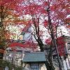 【開催レポート】IBDふくしま 定期交流会 11月17日@新白河